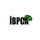 IBPCA