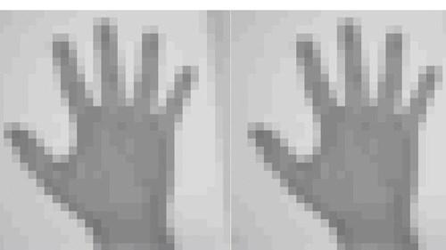 Pesquisadores transformam DNA de bactérias em HD para armazenar imagens