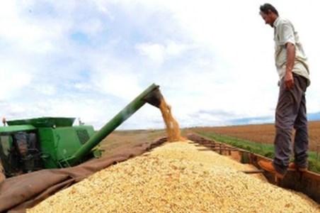 Exportação brasileira desafia onda protecionista e pode crescer 10%